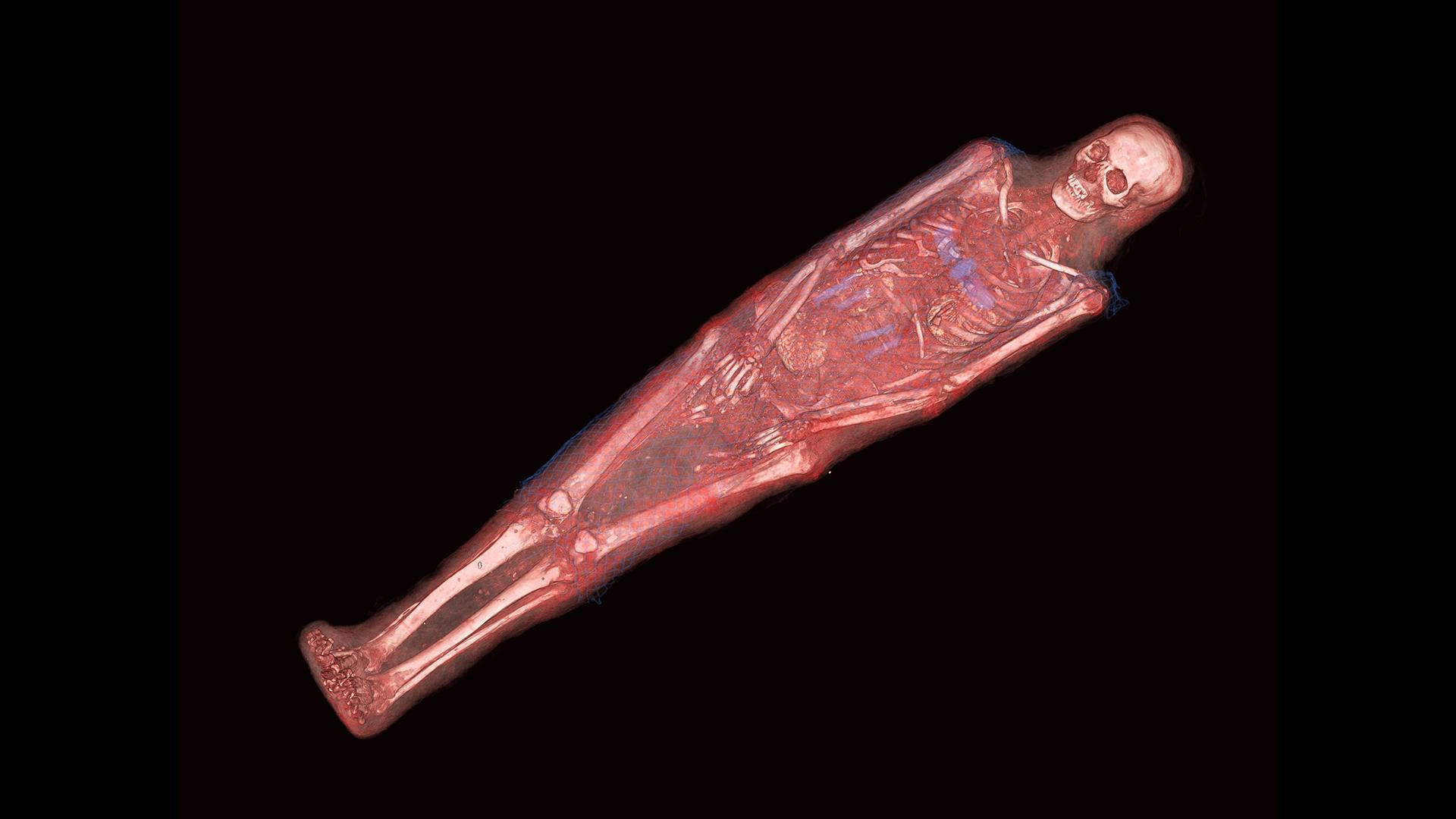 Momie d'Anhkpakheded - Numérisation 3D - Tomographie