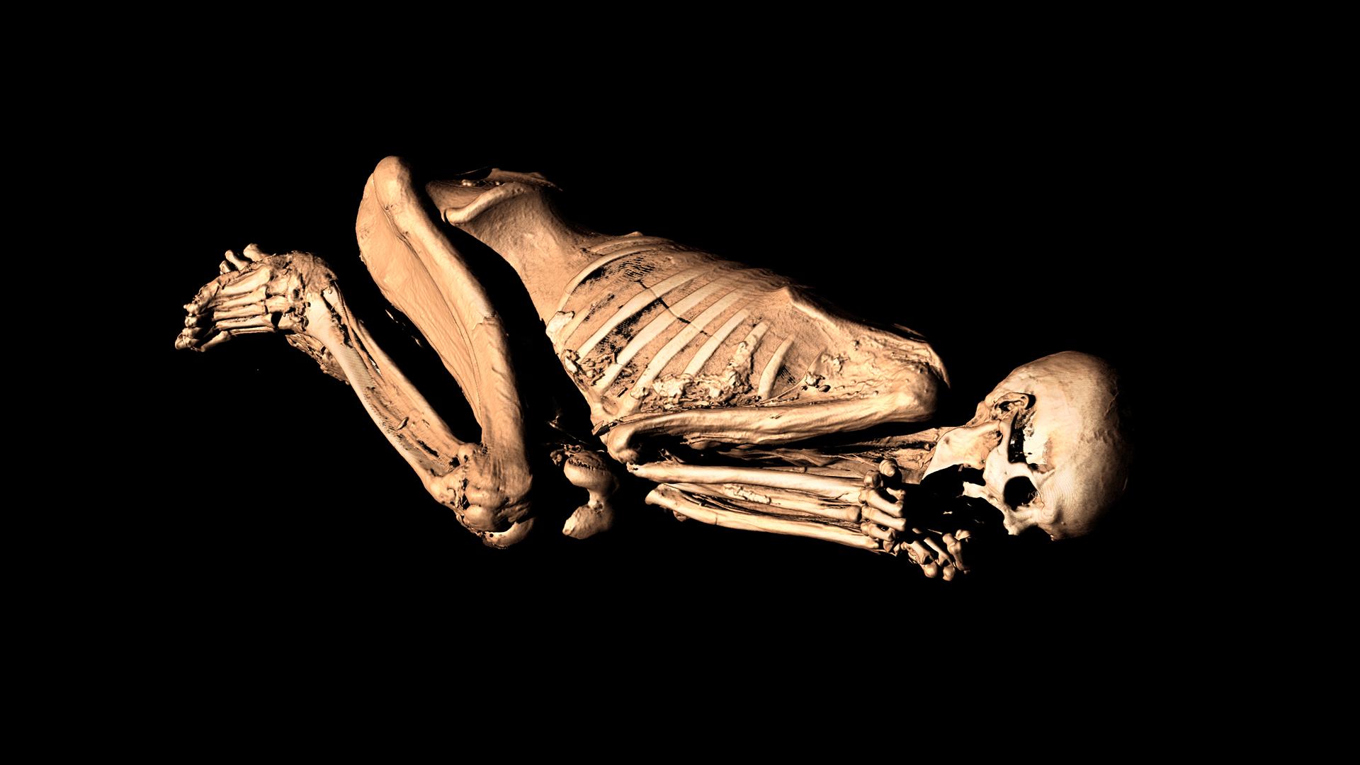 British Museum - Gebelein Man momie