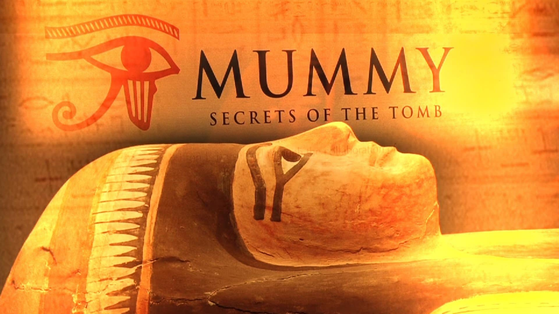 Mummy : Secrets of the Tomb Exhibition for the British Museum