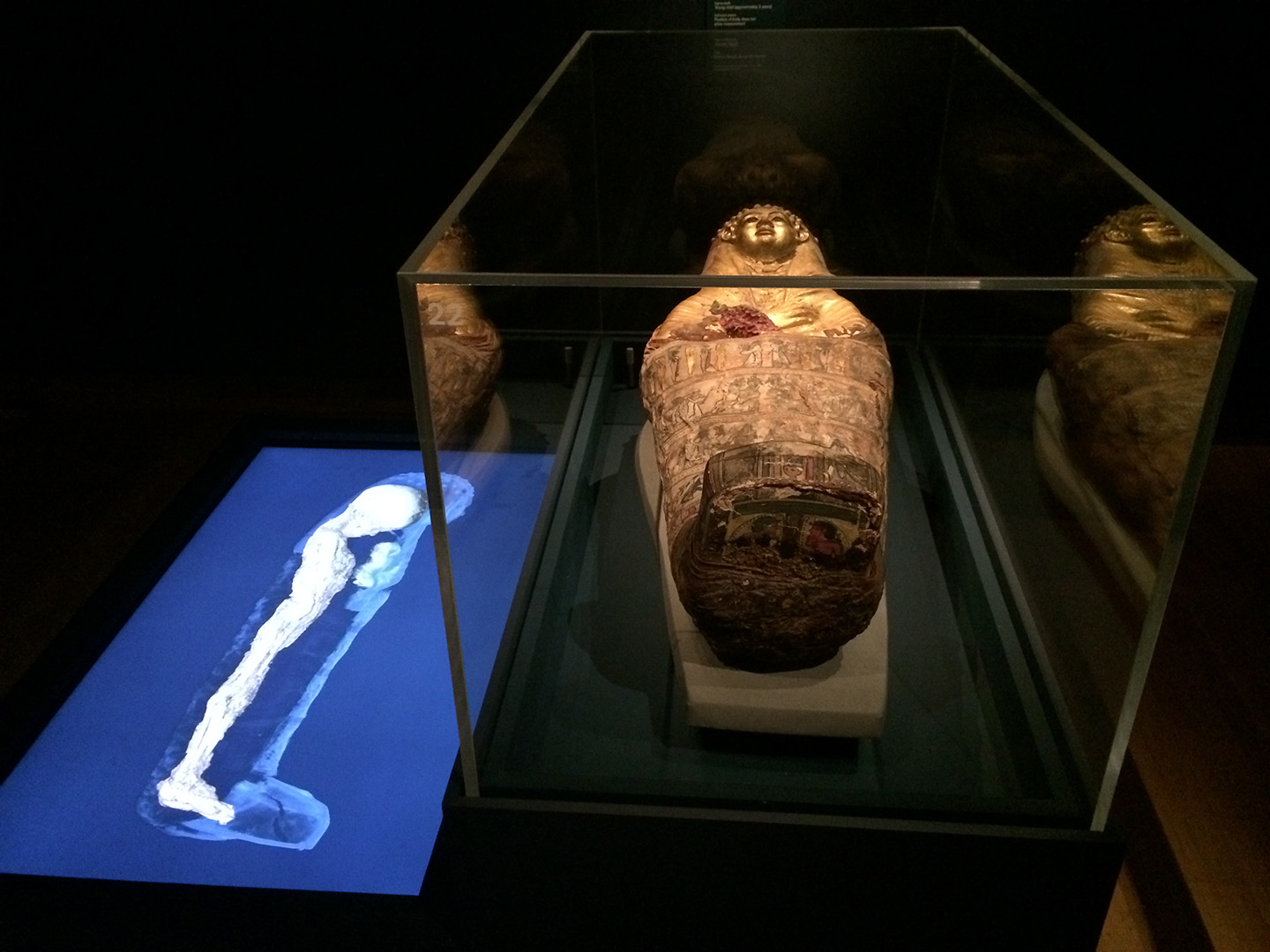 British Museum - 3D mummies