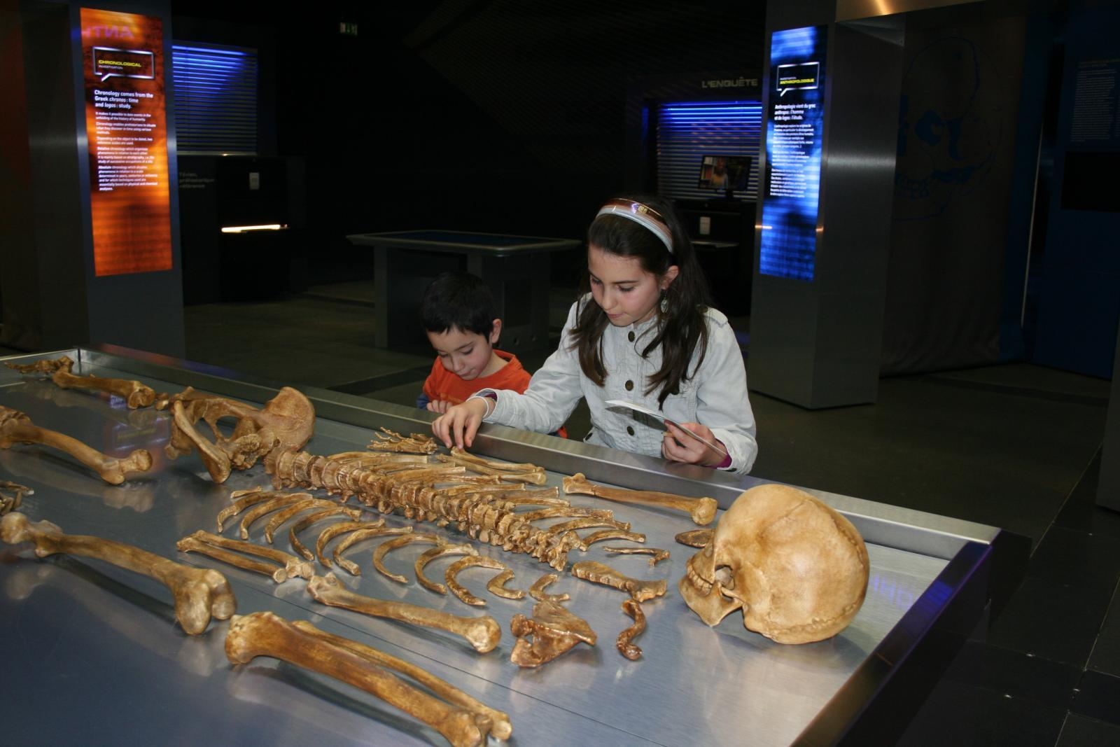 Table d'autopsie - Exposition Préhistoires:l'enquête - Museum de Toulouse
