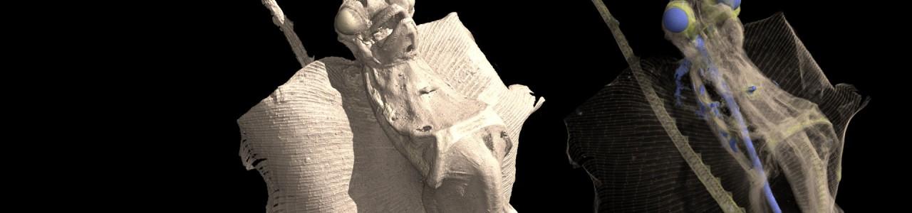 Jenny Haniver 3D
